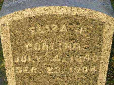 COOLING, ELIZA J. - Miner County, South Dakota | ELIZA J. COOLING - South Dakota Gravestone Photos