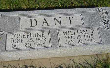 DANT, WILLIAM P. - Miner County, South Dakota | WILLIAM P. DANT - South Dakota Gravestone Photos
