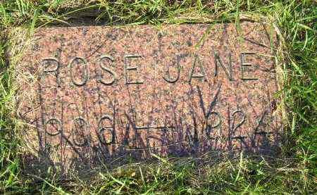 DELANEY, ROSE JANE - Miner County, South Dakota | ROSE JANE DELANEY - South Dakota Gravestone Photos