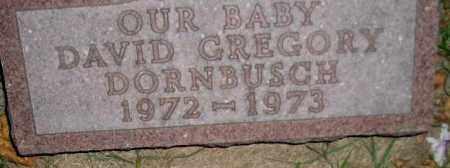 DORNBUSCH, DAVID GREGORY - Miner County, South Dakota   DAVID GREGORY DORNBUSCH - South Dakota Gravestone Photos