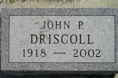 DRISCOLL, JOHN P. - Miner County, South Dakota | JOHN P. DRISCOLL - South Dakota Gravestone Photos