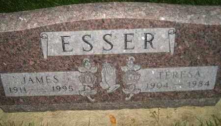 ESSER, JAMES - Miner County, South Dakota | JAMES ESSER - South Dakota Gravestone Photos