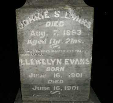 EVANS, JOHNIE S. - Miner County, South Dakota | JOHNIE S. EVANS - South Dakota Gravestone Photos