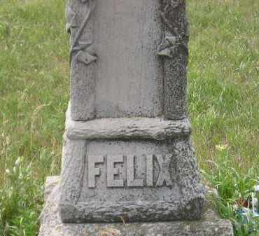 FELIX, FAMILY STONE - Miner County, South Dakota | FAMILY STONE FELIX - South Dakota Gravestone Photos