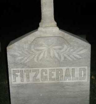 FITZGERALD, FAMILY STONE - Miner County, South Dakota | FAMILY STONE FITZGERALD - South Dakota Gravestone Photos