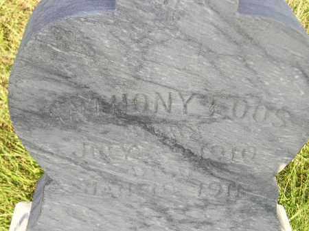 FOOS, ANTHONY - Miner County, South Dakota   ANTHONY FOOS - South Dakota Gravestone Photos