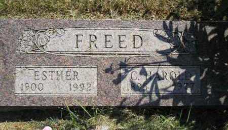 FREED, ESTHER - Miner County, South Dakota | ESTHER FREED - South Dakota Gravestone Photos