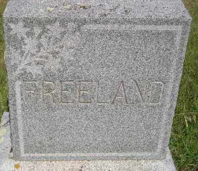FREELAND, FAMILY STONE - Miner County, South Dakota | FAMILY STONE FREELAND - South Dakota Gravestone Photos