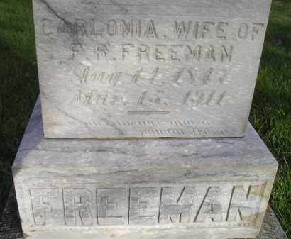 FREEMAN, CARLONIA - Miner County, South Dakota   CARLONIA FREEMAN - South Dakota Gravestone Photos