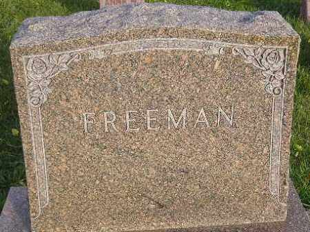 FREEMAN, FAMILY STONE - Miner County, South Dakota | FAMILY STONE FREEMAN - South Dakota Gravestone Photos