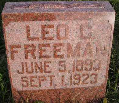 FREEMAN, LEO C. - Miner County, South Dakota | LEO C. FREEMAN - South Dakota Gravestone Photos