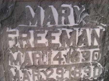 FREEMAN, MARY - Miner County, South Dakota | MARY FREEMAN - South Dakota Gravestone Photos