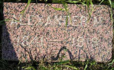 FRILAND, ALEXANDER M. - Miner County, South Dakota | ALEXANDER M. FRILAND - South Dakota Gravestone Photos