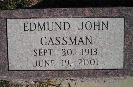 GASSMAN, EDMUND JOHN - Miner County, South Dakota | EDMUND JOHN GASSMAN - South Dakota Gravestone Photos