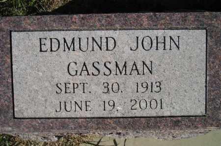 GASSMAN, EDMUND JOHN - Miner County, South Dakota | EDMUND JOHN GASSMAN - South Dakota Gravestone Photos