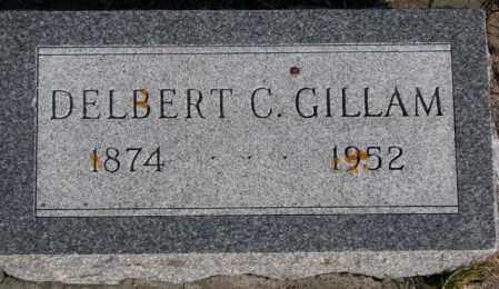 GILLAM, DELBERT C. - Miner County, South Dakota | DELBERT C. GILLAM - South Dakota Gravestone Photos
