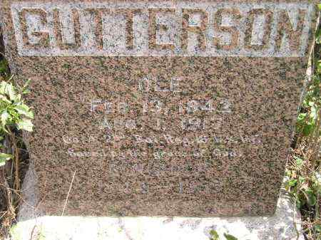 GUTTERSON, BORGHILD - Miner County, South Dakota   BORGHILD GUTTERSON - South Dakota Gravestone Photos