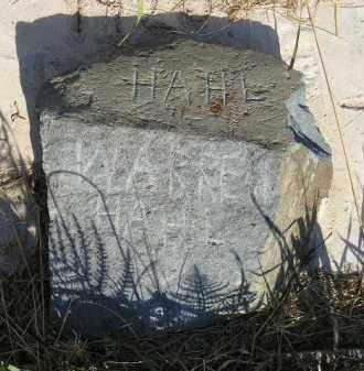 HAHL, WARREN - Miner County, South Dakota | WARREN HAHL - South Dakota Gravestone Photos