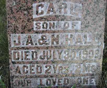 HALL, CARL - Miner County, South Dakota | CARL HALL - South Dakota Gravestone Photos