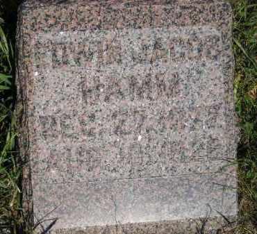 HAMM, EDWIN JACOB - Miner County, South Dakota | EDWIN JACOB HAMM - South Dakota Gravestone Photos