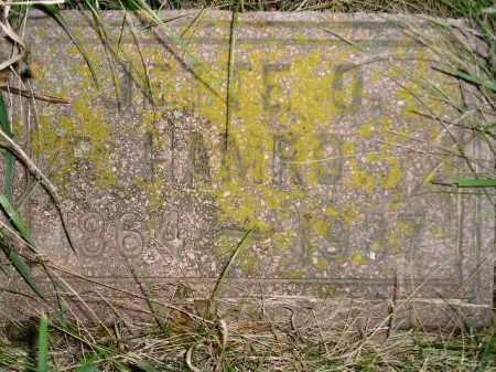 HAMRO, JETTIE O. - Miner County, South Dakota | JETTIE O. HAMRO - South Dakota Gravestone Photos