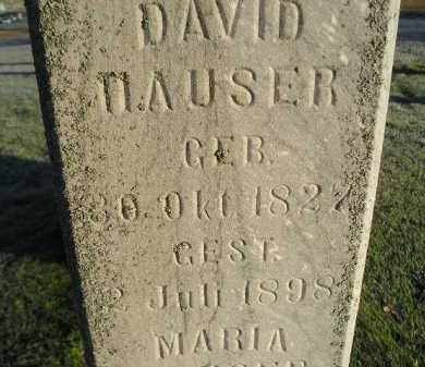 HAUSER, DAVID - Miner County, South Dakota | DAVID HAUSER - South Dakota Gravestone Photos