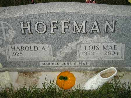SCHNEIDER HOFFMAN, LOIS MAE - Miner County, South Dakota | LOIS MAE SCHNEIDER HOFFMAN - South Dakota Gravestone Photos