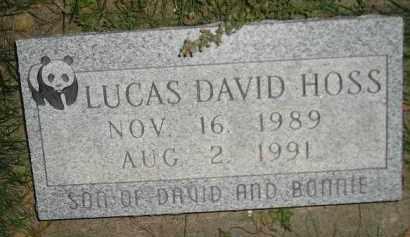 HOSS, LUCAS DAVID - Miner County, South Dakota | LUCAS DAVID HOSS - South Dakota Gravestone Photos
