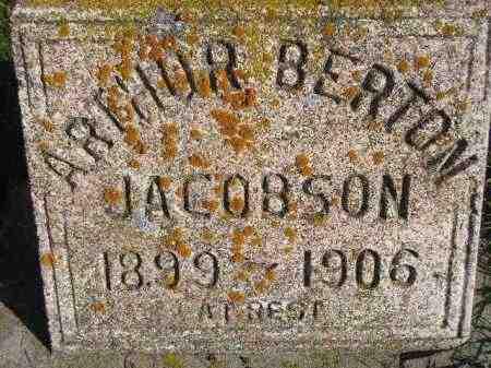 JACOBSON, ARTHUR BERTON - Miner County, South Dakota | ARTHUR BERTON JACOBSON - South Dakota Gravestone Photos