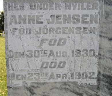 JORGENSEN JENSEN, ANNE - Miner County, South Dakota | ANNE JORGENSEN JENSEN - South Dakota Gravestone Photos