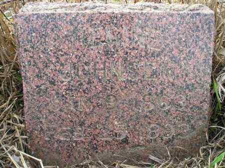 JOHNSON, REGINE - Miner County, South Dakota | REGINE JOHNSON - South Dakota Gravestone Photos