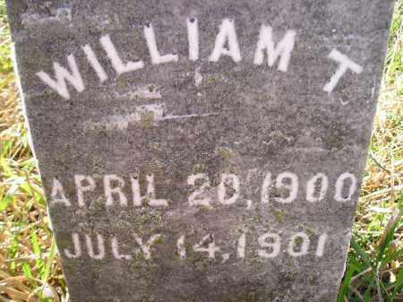 JOHNSON, WILLIAM T. - Miner County, South Dakota | WILLIAM T. JOHNSON - South Dakota Gravestone Photos