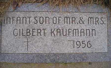 KAUFMANN, INFANT SON - Miner County, South Dakota | INFANT SON KAUFMANN - South Dakota Gravestone Photos