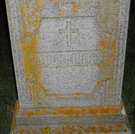 LADENBURGER, FAMILY STONE - Miner County, South Dakota | FAMILY STONE LADENBURGER - South Dakota Gravestone Photos