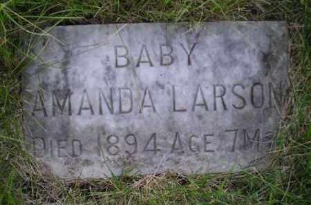 LARSON, AMANDA - Miner County, South Dakota   AMANDA LARSON - South Dakota Gravestone Photos