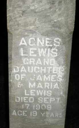 LEWIS, AGNES - Miner County, South Dakota | AGNES LEWIS - South Dakota Gravestone Photos