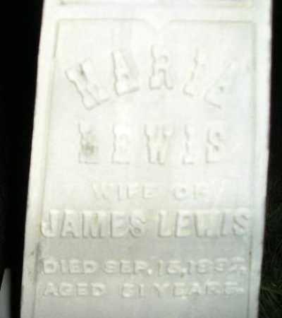 LEWIS, MARIA #2 - Miner County, South Dakota   MARIA #2 LEWIS - South Dakota Gravestone Photos