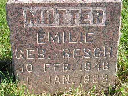 MALWITZ, EMILIE - Miner County, South Dakota | EMILIE MALWITZ - South Dakota Gravestone Photos