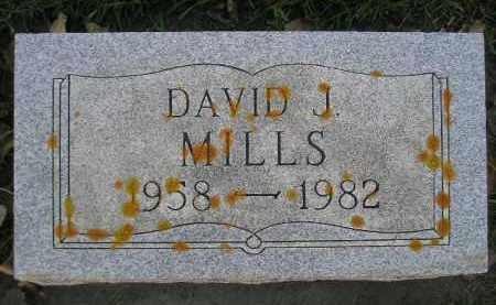 MILLS, DAVID J. - Miner County, South Dakota | DAVID J. MILLS - South Dakota Gravestone Photos
