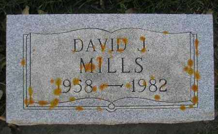 MILLS, DAVID J. - Miner County, South Dakota | DAVID J. MILLS - South Dakota Gravestone Photos