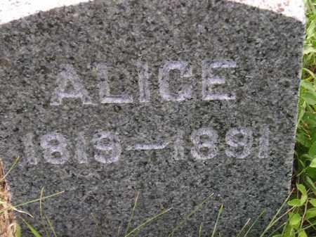 MORGANS, ALICE - Miner County, South Dakota   ALICE MORGANS - South Dakota Gravestone Photos
