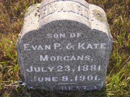 MORGANS, EDWARD - Miner County, South Dakota | EDWARD MORGANS - South Dakota Gravestone Photos