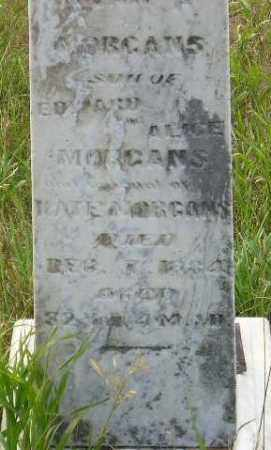 MORGANS, EVAN P. - Miner County, South Dakota   EVAN P. MORGANS - South Dakota Gravestone Photos