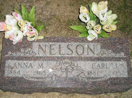 NELSON, CARL J. - Miner County, South Dakota | CARL J. NELSON - South Dakota Gravestone Photos