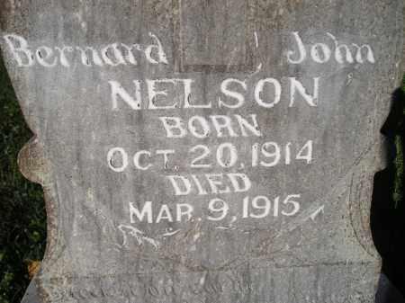 NELSON, BERNARD JOHN - Miner County, South Dakota | BERNARD JOHN NELSON - South Dakota Gravestone Photos