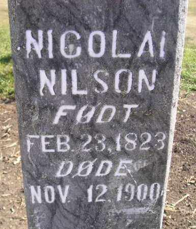 NILSON, NICOLAI - Miner County, South Dakota | NICOLAI NILSON - South Dakota Gravestone Photos