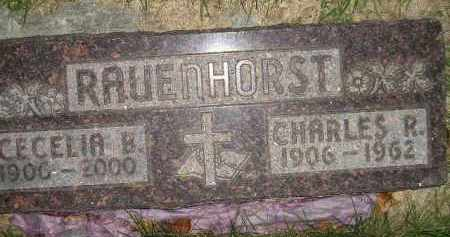 RAUENHORST, CHARLES R. - Miner County, South Dakota | CHARLES R. RAUENHORST - South Dakota Gravestone Photos