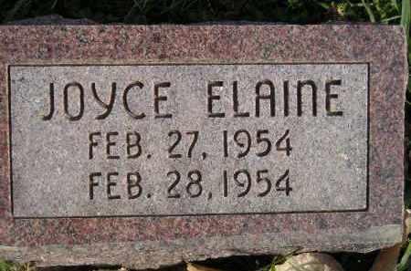 RAYMON, JOYCE ELAINE - Miner County, South Dakota | JOYCE ELAINE RAYMON - South Dakota Gravestone Photos