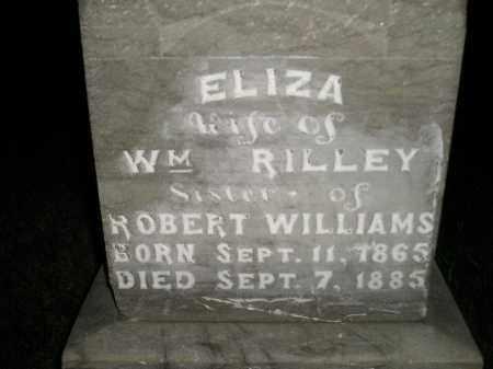 WILLIAMS RILLEY, ELIZA - Miner County, South Dakota | ELIZA WILLIAMS RILLEY - South Dakota Gravestone Photos
