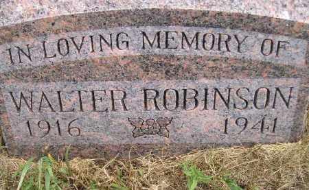 ROBINSON, WALTER - Miner County, South Dakota   WALTER ROBINSON - South Dakota Gravestone Photos